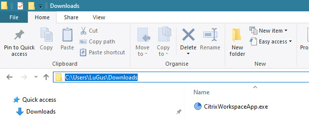 Finding the path to Citrix installer